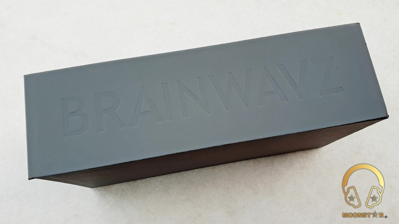 BRAINWAVZ B200 Review